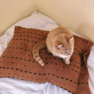 Fair trade fabric pet pillow. Hand stitching with recycled sari strips and naturally dyed.